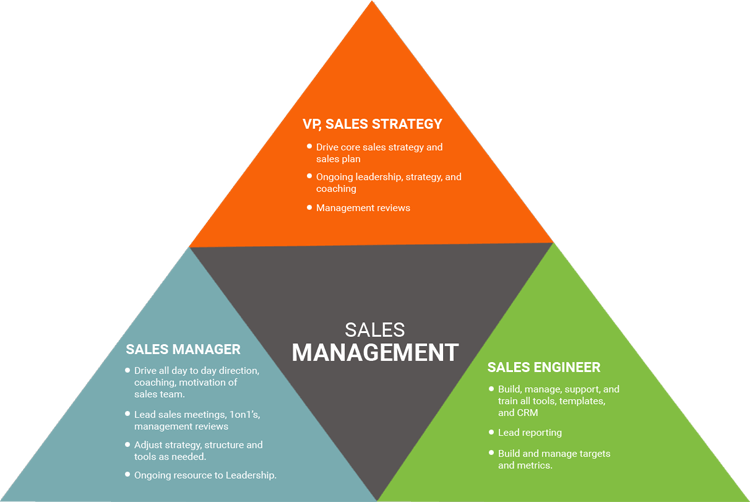 Sales Operations Manager Salary >> Outsourced Sales Management for Companies with No Sales Manager | Focus